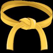 InnoSurvey™ Grading: Yellow Belt & Ideation360 – Washington D.C.